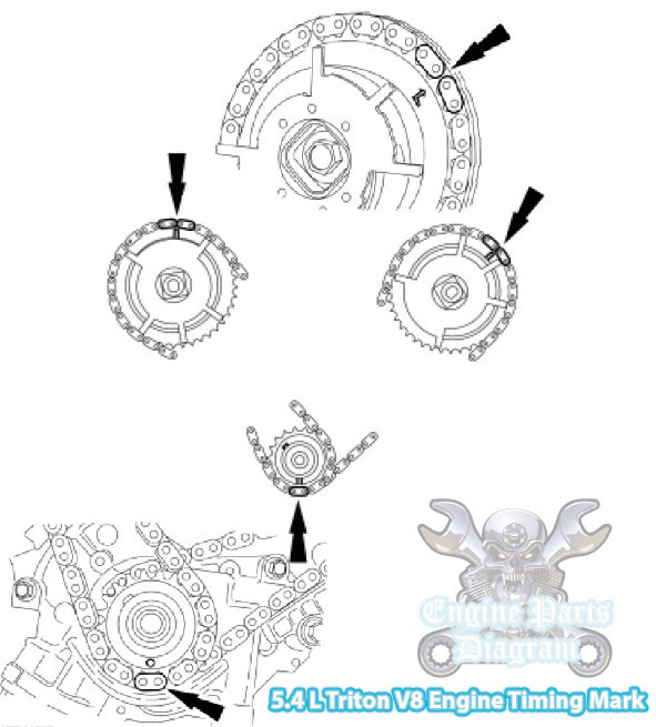 Ford 5 4 Phaser Replacement on Ford F 150 Timing Chain Diagram